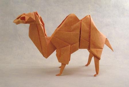 animal dobradura
