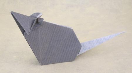 rato de papel