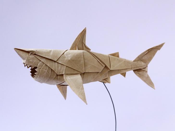 tubarão de papel