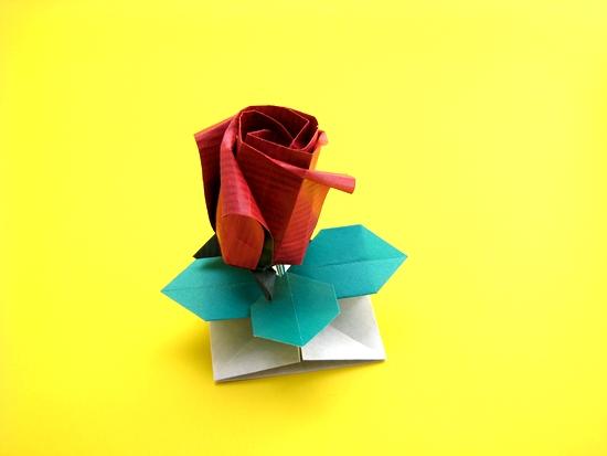 rosas dobradura