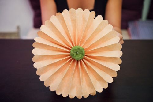 flores com dobradura