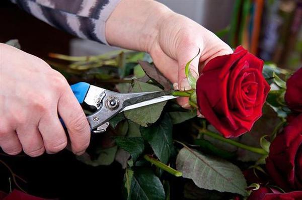 como fazer arranjo de flores (Custom)
