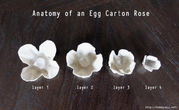 florzinhacx de ovo