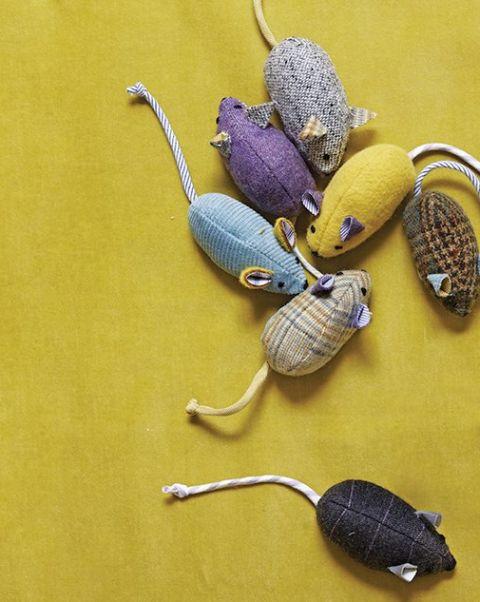 Se ganhar este brinquedo para gato o seu bichano vai ficar ainda mais feliz (Foto: marthastewart.com)