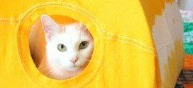 Casa para Gato Feita de Camisa Passo a Passo