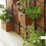 10 Ideias de Minijardins para Dentro de Casa
