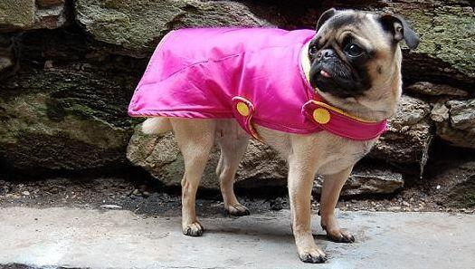 Há muitas ideias legais para fazer com guarda-chuva quebrado (Foto: mnn.com)