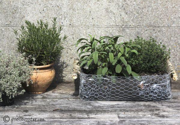 Este vaso de arame pode acomodar qualquer planta ou flor de sua preferência, mas desde que a espécie possua tamanho pequeno (Foto: precioussister.com)
