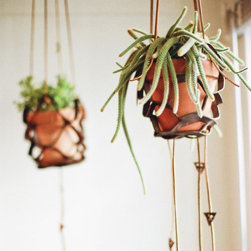 Este suporte de teto para plantas é também sustentável, pois você pode aproveitar retalhos de couro quando utilizar vasinho bem pequeno (Foto: designsponge.com)