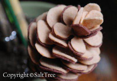 (Foto: salttree.net)