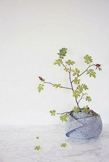 Este cachepô de feltro pode revestir todos os vasos de plantas de sua casa (Foto: lotsofdiy.com))