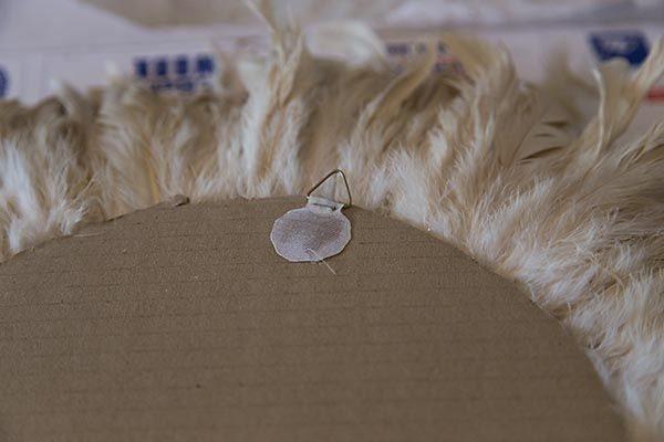 (Foto: songbirdblog.com)