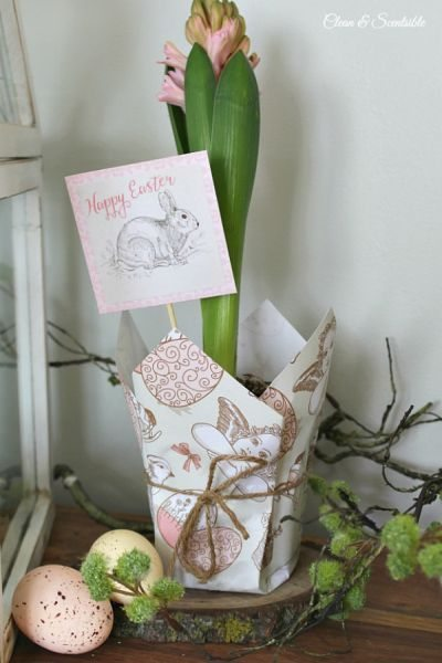 Cachepot de papel para plantas é lindo e barato (Foto: cleanandscentsible.com)