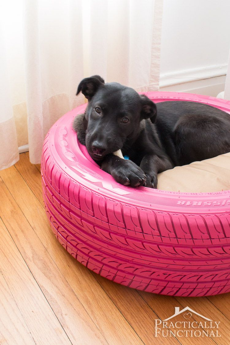 Turn An Old Couch Into A Dog Bed
