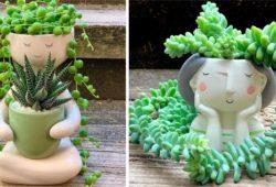 vasos de platas diferentes e criativos