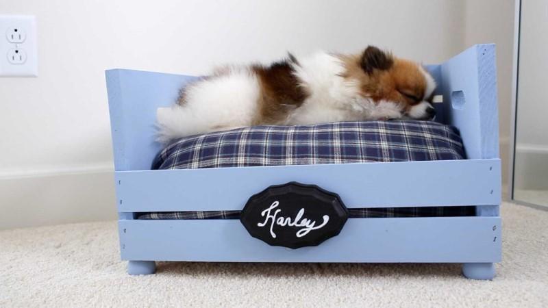 como fazer cama de cachorro