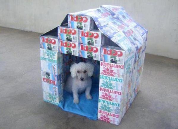 casa de cachorro de material reciclável