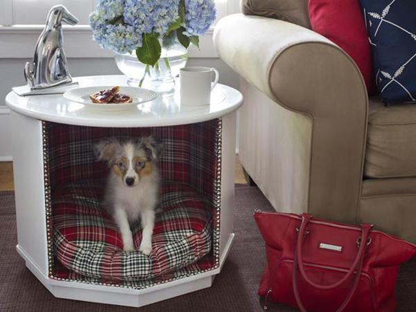 casinha de cachorro funcional