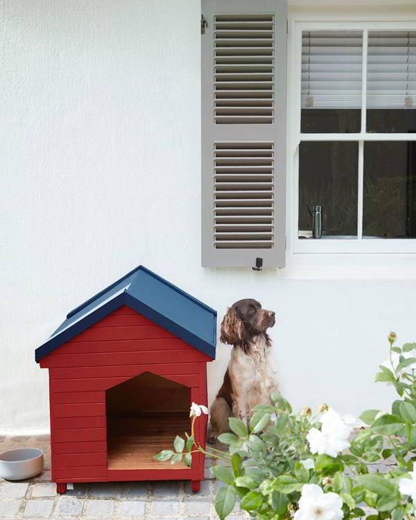 casas de cachorros