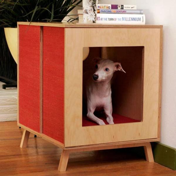 casa de cachorro persoanlizada