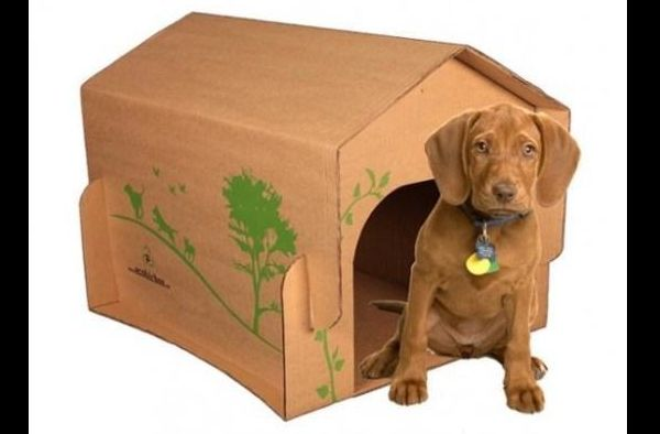 casinha de cachorro sustentável