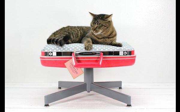 caminha de gato com material reciclável