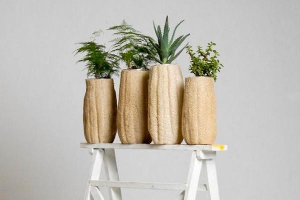 vaso de bucha vegetal