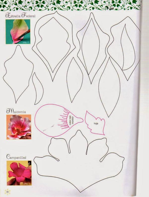 molde flor colorida