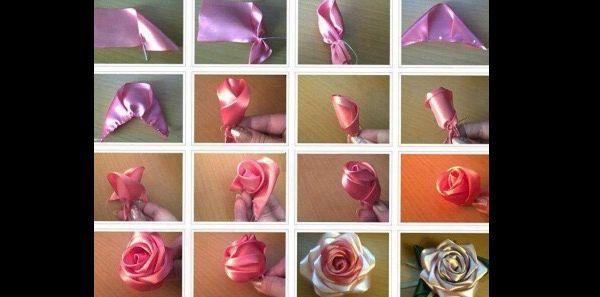 rosa pontuda