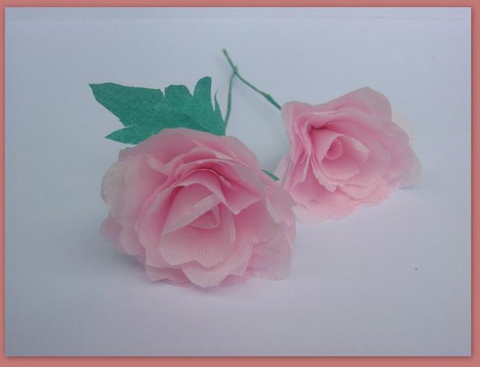 rosas de papel rosinha