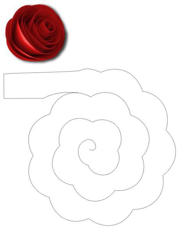 rosa espiral