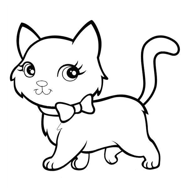 molde gato