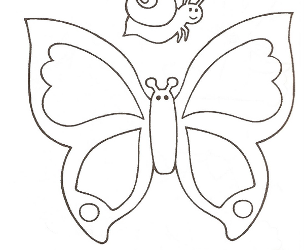 borboleta com carinha molde