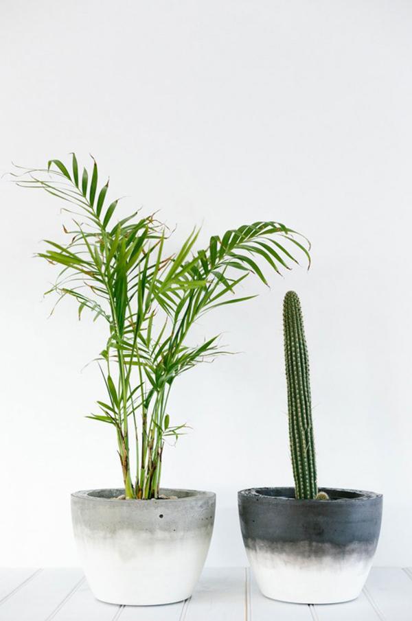 vaso de concreto com formas