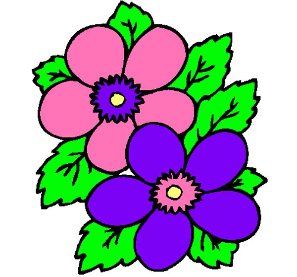 desenhos de flor comuns