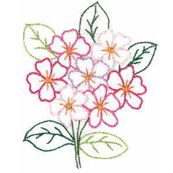 desenhos de flor coloridos