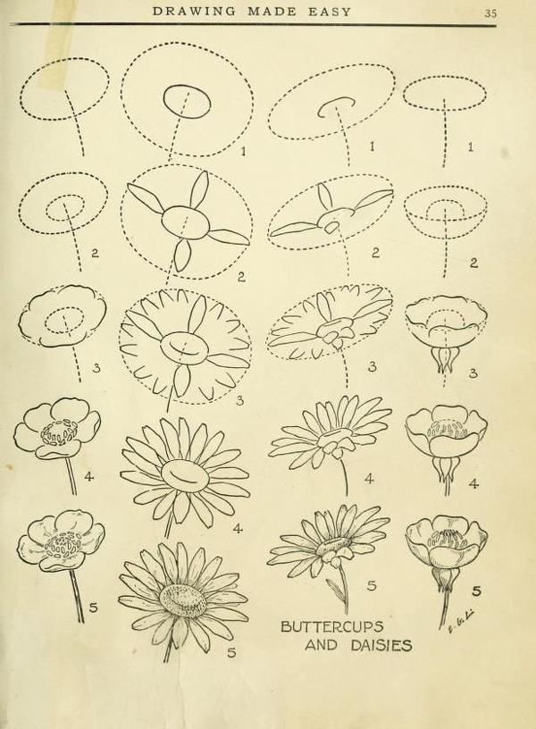passo a passo desenhos de flor