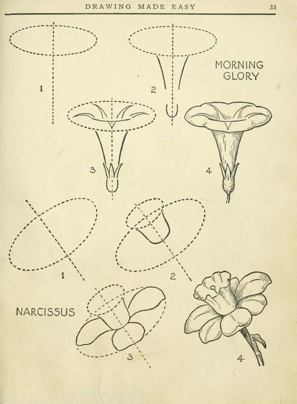 desenhos de flor passo a passo