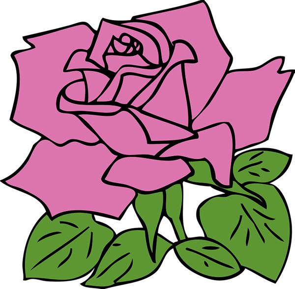 desenhos de flor rosa