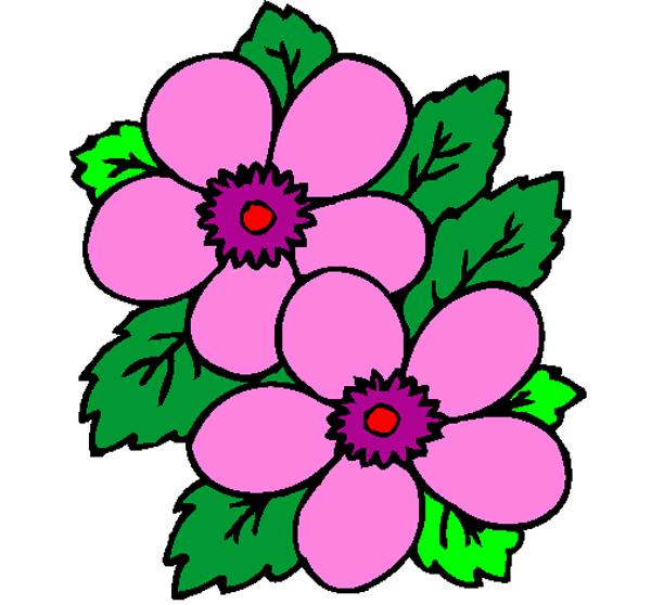 desenhos de flor faceis