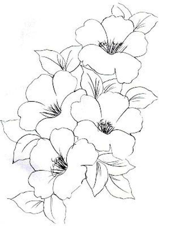 desenhos de flor em grupo