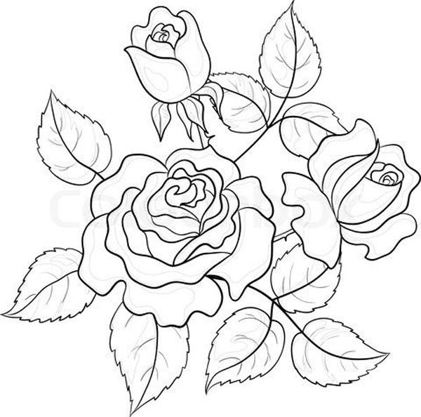 desenhos de flor com folha