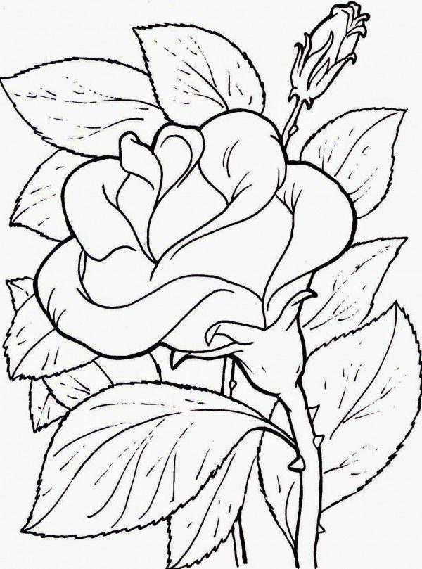 desenhos de flor rosinha