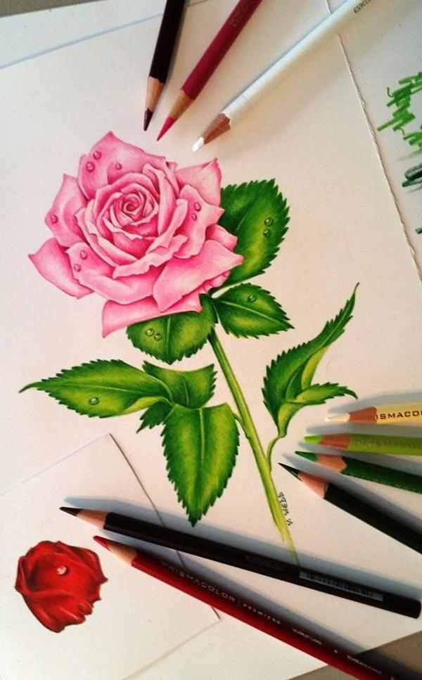 desenhos de flor rosa com caule