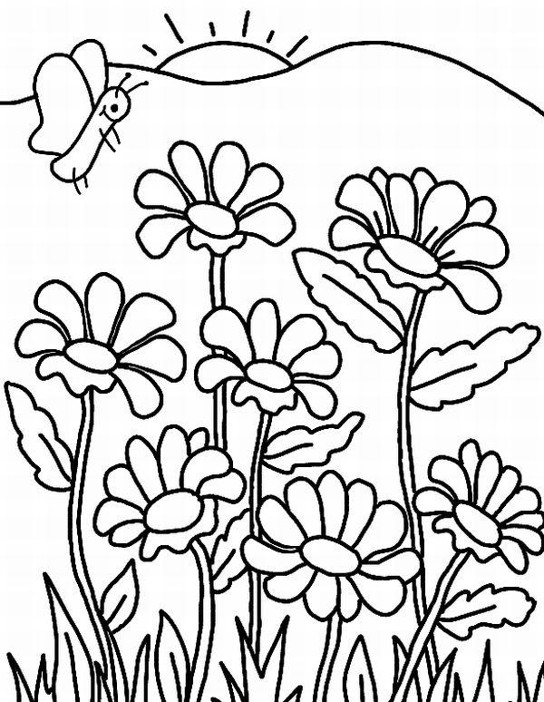 Flores Desenhos Romes Danapardaz Co