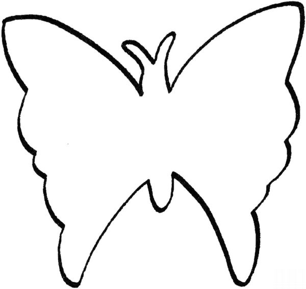 borboleta de papel desenho