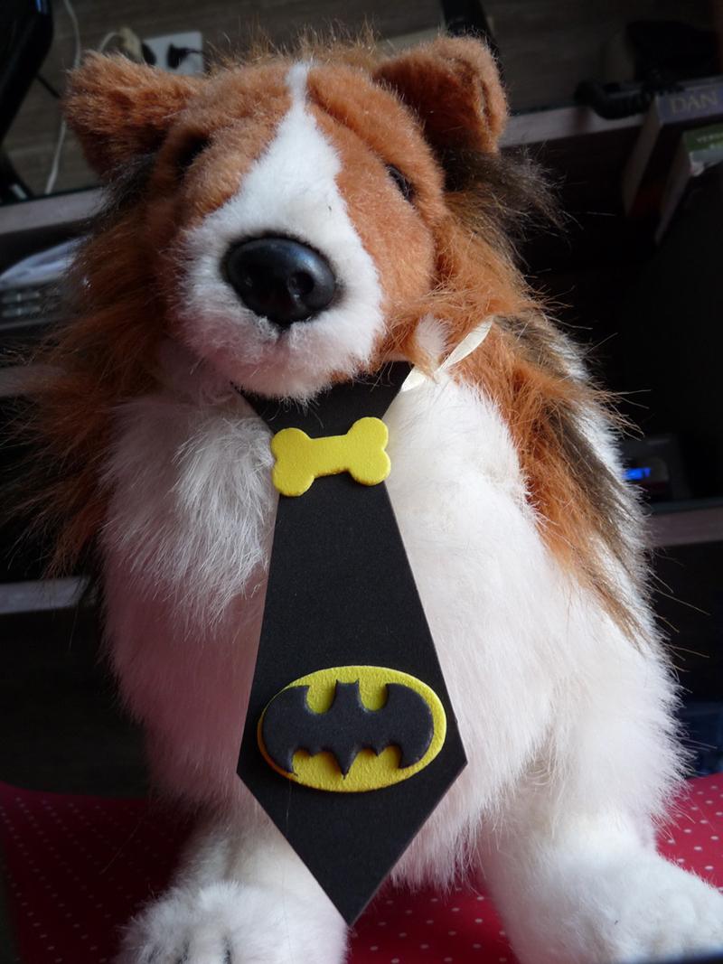 gravata em EVA cao