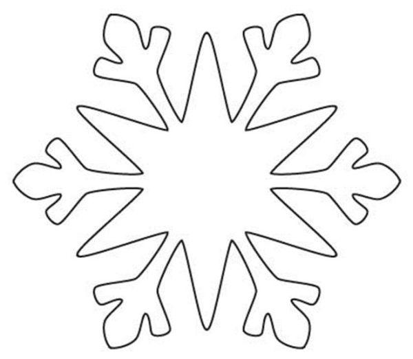 flocos de neve comum