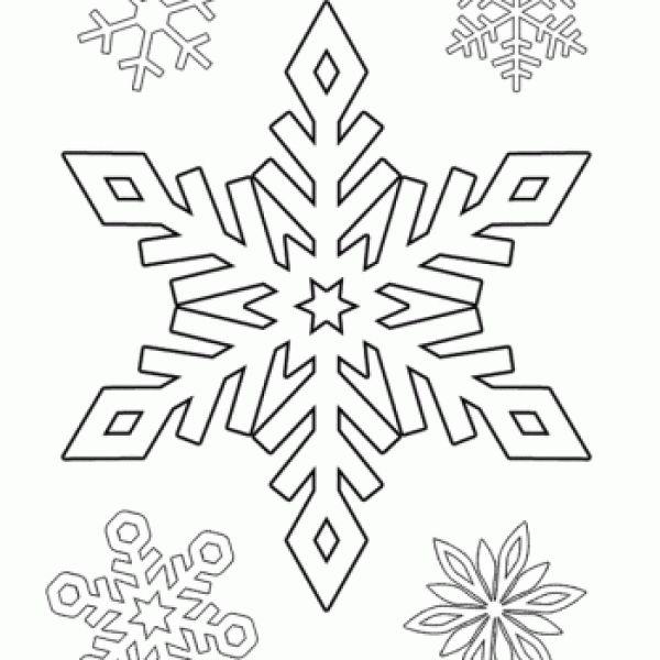 flocos de neve diversos