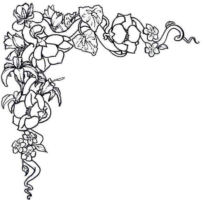 Line Drawing Coneflower : Desenhos para pano de prato imprimir moldes